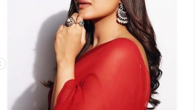 Photo of Sonakshi Sinha looks stunning in this red sari