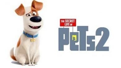 Photo of The Secret Life of Pets 2 trailer