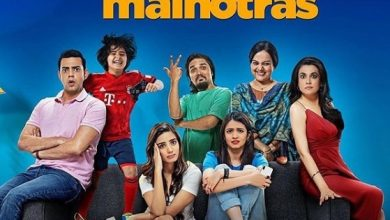Photo of Amazon Prime's new series Mind The Malhotras trailer released