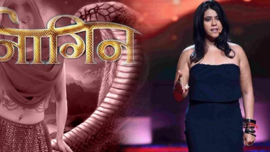 Photo of Naagin 3 finale episode teaser out