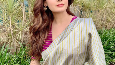 Photo of Dia mirza gives us the fashion elegance looks