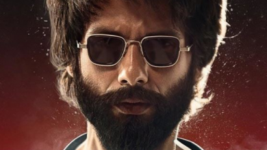Kabir Singh rages at the box office