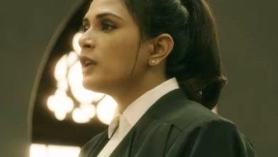 Richa Chadha and Akshaye Khanna starring Section 375 teaser released