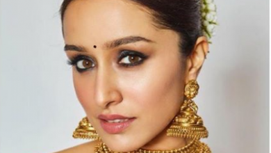 Photo of Shraddha Kapoor looked beautiful in this silk sari