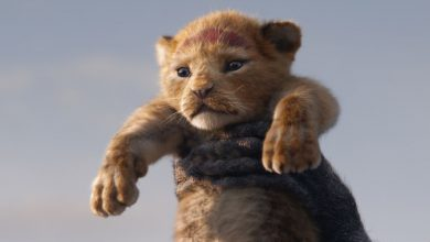 Photo of The Lion King sequel to be directed by Barry Jenkins